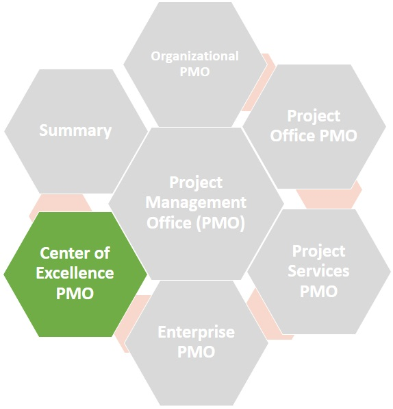 Center of Excellene PMO